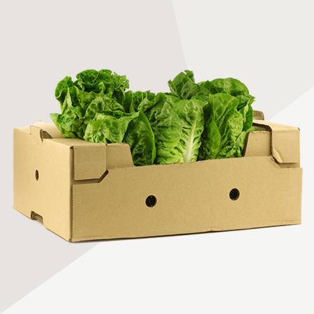 Fruit - Vegetable Box